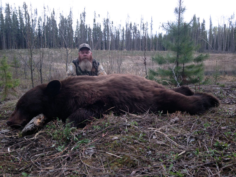 Alberta Canada bear hunts